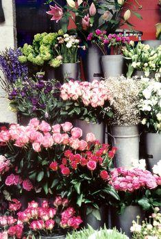 London Flower Market No. 2 ~ Original Colour Film Photograph by Suzanne MacCrone