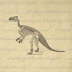 Printable Graphic Dinosaur Skeleton von VintageRetroAntique auf Etsy, $3.50