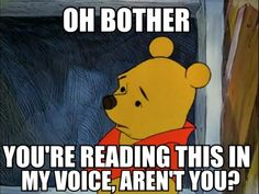 funny pictures, bears, funni, pooh bear, winniethepooh
