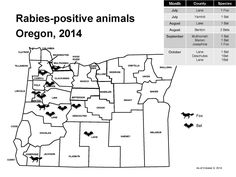 Rabies-positive animals, Oregon by Oregon Acute and Communicable Disease Prevention