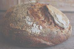 Tartine Bread Experiment: its just bread