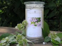 Fresh and clean fragrance of a blooming lilac bush.