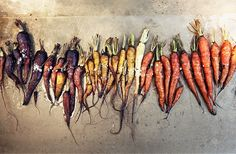 colorful carrots. gorgeous.