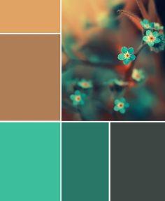 floral colour