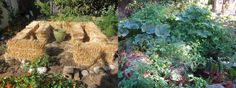 straw bale garden before and after, what he learned