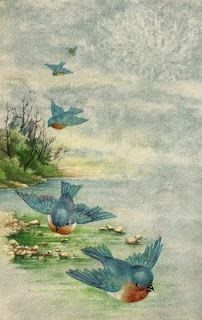 bluebirds ~  vintage postcard vintage postcards, the lord, prayer, bluebird, god, bible scriptures, birds, blues, corinthian 29