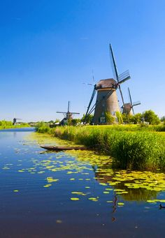 North of Amsterdam #greetingsfromnl
