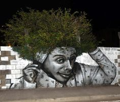 Street artist Nuxono Xän added a humorous touch to this wall in Fort de France, Martinique