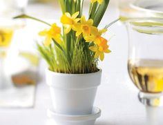 How to Make Daffodil Party Favors