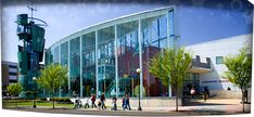 Creative Discovery Museum   Chattanooga TN   Kids Attractions