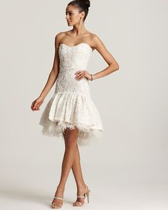 Badgley Mischka Lace Dress - Drop Waist.