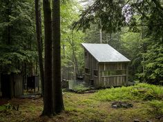 cabin, beaver brook, hous