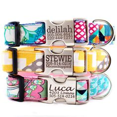 Metal Personalized Engraved Buckle Dog Collar *Classic Styles | Classic Mimi Green Dog Collars | Designer Dog Collars | Shop Mimi Green