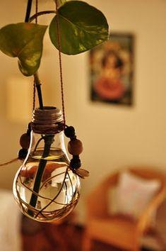 light bulb plant holder