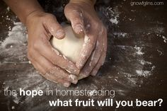 """The Hope in Homesteading, Part 2: What Fruit Will You Bear? 