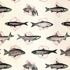 fishes in geometrics (red) • speakerine • via society6