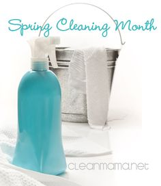 WHO'S WITH ME?  Spring Cleaning Month at Clean Mama blog!