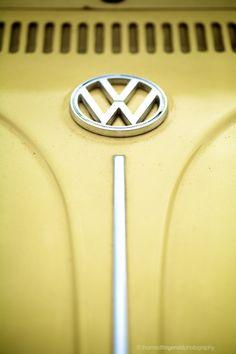 Creamy yellow VW art - http://www.LindsayVolkswagen,com #VW #Volkswagen
