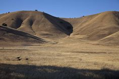 Contra Costa Hills #5 by Tom Moyer Photography, via Flickr