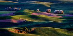 (© Randall Roberts/National Geographic Traveler Photo Contest, http://aka.ms/travelercontest)