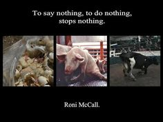 This is exactly why we speak out!  Please go vegan and stop your part in this horror..