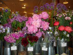 Cut flowers of fleeting yet extraordinary beauty ..... @ Dean & Deluca NYC