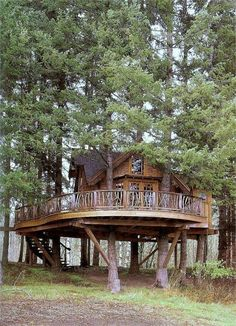 This makes me think of Swiss Family Robinson for some reason.  AMAZING tree house with a wrap around deck!