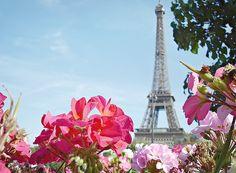 eiffel tower, paris, dream places, towers, monster, makeup looks, beauty, flowers, inspiring pictures