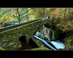 Hermitage Bridge~Dunkeld, Scotland