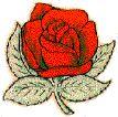 Alpha Omicron Pi Crest #Greek #Sorority #AlphaOmicronPi #AOPi  #AOII #Crest #Rose crest rose