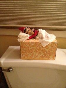 nap time, hiding places, shelf idea, christmas elf, tissue boxes, sleep, elv, christma elf, tissu box