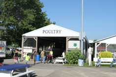 Monroe County 4-H Poultry Club page