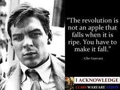 Che Guevara Quotes