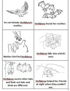... lessons nonfiction stellaluna bats lessons 1st grade library lessons