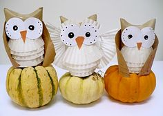 owl craft easy sweet results