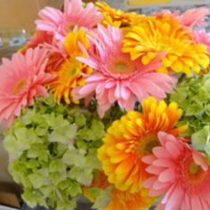 Flowers from Anna Olson