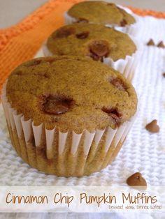 Cinnamon Chip Pumpkin Muffins