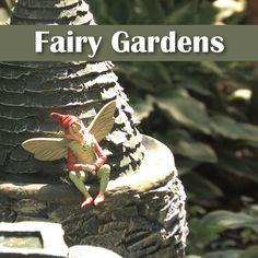 Looking for a fun way utilize hard-to-plant spaces? Fairy gardens are fun projects for all ages.