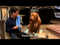 Turner & Hooch - NL subs   - FULL MOVIE www.youtube.com/antonpictures #happy #birthday #Watch #FREE