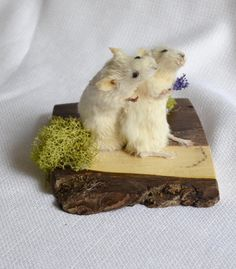 Taxidermy mouse couple. by NimbleMatters on Etsy