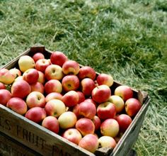 Apples are one fruit you should buy organic whenever possible, according to an environmental group.
