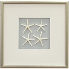 Star Fish Framed Wall Art I in White  love this, maybe use for Florida room