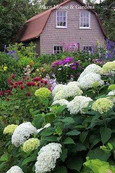 Aiken House & Gardens~ Early August Garden