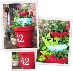 tiered potted plants