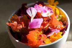 42 Flowers You Can Eat : TreeHugger http://www.treehugger.com/green-food/42-flowers-you-can-eat.html Lemon Limes, Fennel, Clovers, Food, Daisies, Chrysanthemums, Basil, Homesteads Survival, Edible Flowers