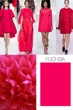 Fuchsia is one of the essential color trend for 2015 - 2016 that brighten the winter day!