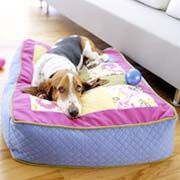 Great tips on how to make your furry loved one a special dog bed...many to choose from