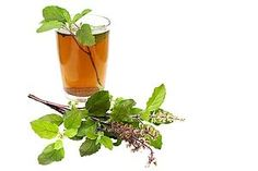 supplemental holy basil helps w/Stress