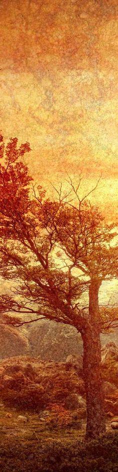 by Trey Ratcliff