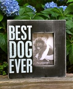 'Best Dog Ever' Box Picture Frame.